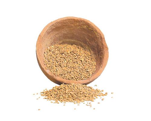cocciopesto-granulare-giallo